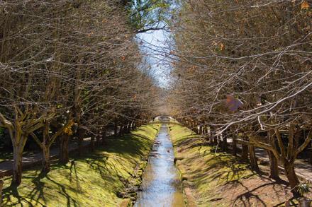 Parque das Águas de Caxambu MG
